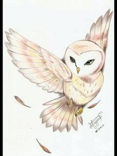 Barn Owl Tattoo Design Tattoo Ideas Pinterest Tattoos Owl
