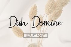 Smart Buys! Dish Domine Handwritten Script Modern Signature That Feels Beautiful Classy Elegant And Modern Font starting from €2.80 See more. 🤓 #Elegant #Script #Modern #Calligraphy #Logo #Casual #Handwritten #Signature #Classy #Handwritting Modern Script Font, Modern Fonts, Script Fonts, Different Types Of Handwriting, Chalk Fonts, Classy Fonts, Professional Fonts, Lettering, Calligraphy Logo