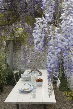 Wisteria and dining al fresco… Love Garden, Dream Garden, Home And Garden, Cacti Garden, Garden Living, Outdoor Rooms, Outdoor Gardens, Outdoor Living, Outdoor Decor