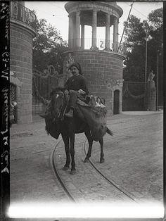 Leiteiro no Jardim Zoológico (1902)
