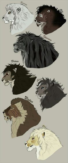 The gentlemen of the Achidar pride. by NadiavanderDonk. on deviantART The gentlemen of the Achidar pride. by NadiavanderDonk. on deviantART Source by mcascalesromo. Animal Sketches, Animal Drawings, Cool Drawings, Art Sketches, Mythical Creatures Art, Fantasy Creatures, Dragon Sketch, Lion Art, Furry Art