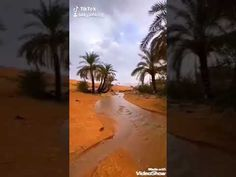 ماأجمل احساس الصفاء والجو ممطر - YouTube Beach, Water, Outdoor, Art, Water Water, Art Background, Aqua, Outdoors, The Beach