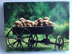 Springbok Waggin' Load of Pups
