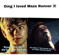 Omg I love this>>>> umm it's about newt dying slinthead! << yeah you shouldn't love this you shank how bloody dare you Maze Runner Quotes, Maze Runner Funny, Maze Runner Trilogy, Maze Runner Thomas, Maze Runner The Scorch, Maze Runner Cast, Maze Runner Movie, Maze Runner Series, Thomas Brodie Sangster