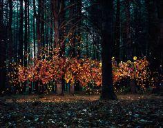 Photographs by Thomas Jackson
