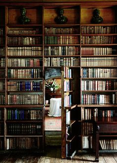 Hidden room in the library!!! my future house will have at least 2 hidden rooms.