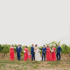Bridal party fun amongst the vines ❤️❤️❤️ Vineyard wedding Hamilton #jelphotography #aucklandphotographer alternative wedding photographer
