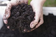 Garden Soil Preparation: Tips For Improving Garden Soil