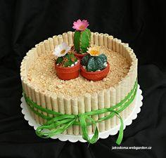 Cactus cake                                                                                                                                                      Más