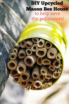 Want to do your part to save the pollinators? This easy DIY mason bee house takes only minutes to make and will attract pollinators to your garden!  Makes a great Earth Day craft, garden craft or an easy kid craft for a rainy day!