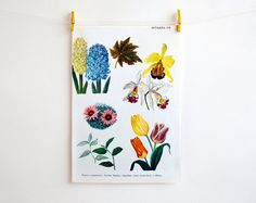 Vintage flower nature illustration by camelotia on Etsy, $4.00