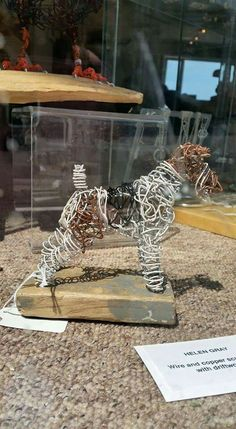 It's a wire wire fox terrier.