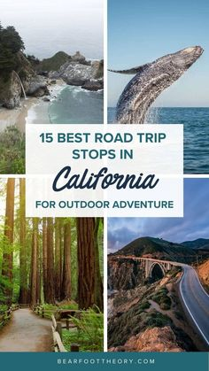 See the best California road trips stops for outdoor adventure including California's National Parks, monuments, coastal towns, and more. Death Valley National Park, Joshua Tree National Park, California National Parks, California Travel, Road Trip Hacks, Road Trips, Mammoth Lakes, Best Hikes, State Parks