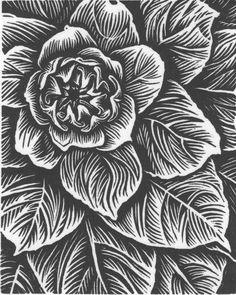 Printmaking Art Inspiration, line work Lino Art, Woodcut Art, Linocut Prints, Linoprint, Scratchboard, Wood Engraving, Woodblock Print, White Art, Zentangle