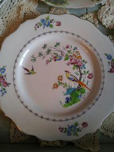 "Vintage ""Duchess"" bone china bird plate. From eyecandy vintage."