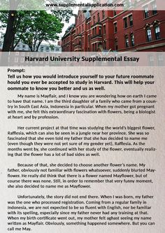 pin by donaldross on supplementalapplication  take advantage of the information on harvard supplemental application requirements