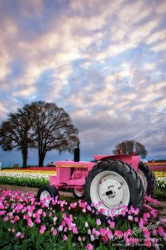 John Deere in Pink girly pink nature flowers field farm tractor john deere Pink Love, Pretty In Pink, Hot Pink, Pink Tractor, Image Nature, I Believe In Pink, Everything Pink, Country Girls, Country Living