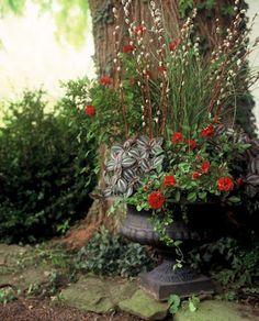 Love the big tree backdrop, beautiful living arrangement.....