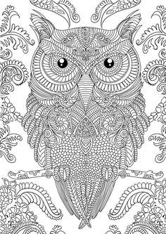 10 Difficult Owl Coloring Page For Adults http://procoloring.com/10-difficult-owl-coloring-page-for-adults/
