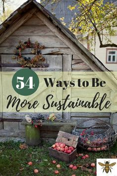 54 Ways to Be More Sustainable - HomeSteading - Dekoration Green Life, Go Green, Urban Homesteading, No Waste, Eco Friendly House, Natural Living, Simple Living, Sustainable Living, Sustainable Energy