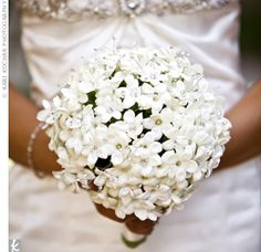 Love stephanotis with crystal centers!