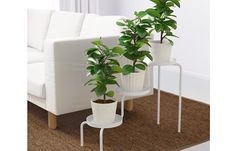 This Ikea Plant Stand Gets One Little Upgrade That Elevates The Whole Thing! - http://www.wisediy.com/this-ikea-plant-stand-gets-one-little-upgrade-that-elevates-the-whole-thing/