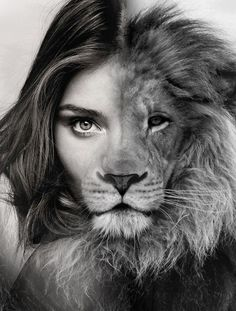 Painting black and white lion ideas Beautiful Cats, Animals Beautiful, Black And White Lion, Animals Black And White, Black And White Posters, Animals And Pets, Cute Animals, Lion Love, Lion Wallpaper