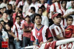 De un lado sufrimiento, del otro lado ira y destrucción. NO A LA VIOLENCIA!. La barra del Caracas FC dañaba lo que podía en la tribuna norte del Estadio Metropolitano. En la imagen: La noble afición de Estudiantes de Mérida FC, testigos de lo que falta por aprender en nuestro fútbol.