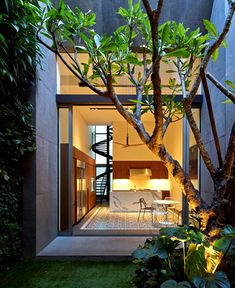 Contemporary Home in Singapore with Curved Spiral Staircase courtyard quaint indoor garden