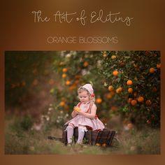 Image result for sandra bianco orange One Image, Photography Editing, Orange Blossom, Photo Manipulation, Photoshop, Apple Orchard, Movie Posters, Painting, Education