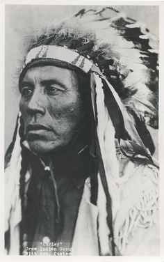 Curley a Crow Indian Scout for General Custer. By Roahen Photos, Billings, Montana.