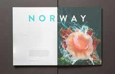 Norway by Brandon Nickerson, via Behance