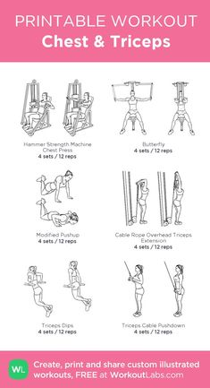 Chest & Triceps · WorkoutLabs Fit Chest & Triceps · WorkoutLabs Fit,fitness Chest & Triceps: my custom printable workout by goals motivation training workouts plan Chest And Tricep Workout, Chest Workout Women, Gym Workout Plan For Women, Triceps Workout, Chest Exercises, Gym Workouts Women, Workout Plans, Work Out Plan Gym, Chest Workouts For Women