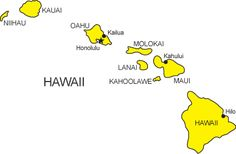 Occupational Therapy Practice Act: Hawaii