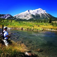 Crowsnest River Alberta fly fishing for trout