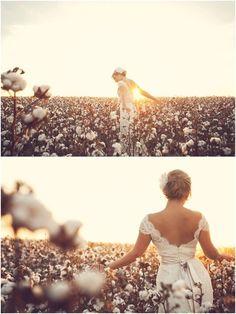 southernmotherwithpearls:  Southern bride in her Daddy's cotton field