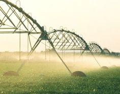 La finalidad del riego por Pivot es aplicar a los cultivos la cantidad de agua adecuada con la máxima uniformidad. El mantenimiento de emisores es fundamental