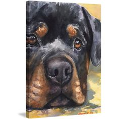 Rottweiler Painting Print on Wrapped Canvas, Size: 12 inch x 18 inch, Multicolor