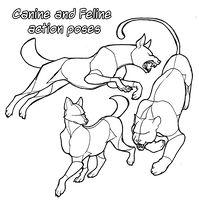 Pose Reference: Canine and Feline Actions + DLC by Animal Sketches, Animal Drawings, Drawing Animals, Wolf Drawings, Wolf Poses, Base Anime, Dragon Poses, Human Poses Reference, Cat Reference