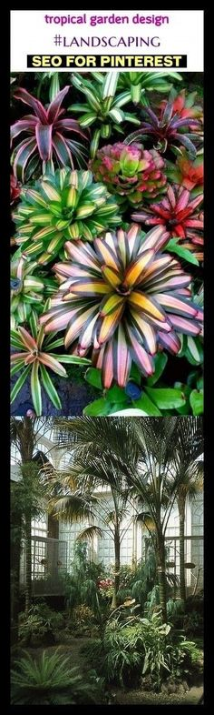 Tropical garden design design the gardens. Garden of … … Tropical garden design design the gardens. Garden of … – Katie Tropical Garden Design, Vegetable Garden Design, Tropical Landscaping, Small Garden Design, Backyard Landscaping, Tropical Gardens, Landscaping Ideas, Backyard Ideas, Tropical Backyard