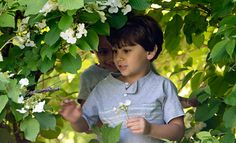 """n the face of the """"indoor-ification """"of early childhood, a cultural and educational movement is emerging—focused on new approaches to nature-based education."""