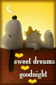 """Good Night Quotes and Good Night Images Good night blessings """"Good night, good night! Parting is such sweet sorrow, that I shall say good night till it is tomorrow."""" Amazing Good Night Love Quotes & Sayings Good Night Greetings, Good Night Wishes, Good Night Sweet Dreams, Good Night Beautiful, Good Night Quotes, Good Night Messages, Gifs Snoopy, Snoopy Quotes, Hug Quotes"""