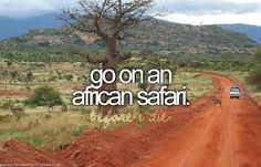 Bucket List: Go on an African Safari