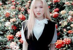 South Korean Girls, Korean Girl Groups, Red Valvet, Wendy Red Velvet, Kim Yerim, Girl Bands, Seulgi, Classy Outfits, Kpop Girls