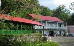 Twitter / PuertoRicoPUR: This is Puerto Rico! Hacienda Buena Vista, historic coffee plantation in Ponce