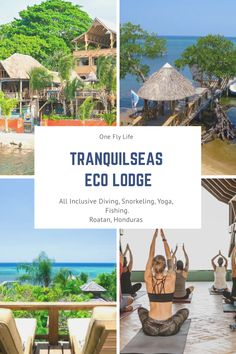 Tranquilseas is an eco-resort in Roatan that has been developed with the environment and community in mind. This all inclusive diving and vacation package includes jungle cabanas and PADI dive services. If you are looking for a relaxing vacation in nature, to dive, snorkel, do yoga and eat amazing food…. then this is the place for you Beach Vacation Packing List, Beach Vacation Outfits, Vacation Packages, Beach Trip, Beach Travel, Caribbean Rum, Caribbean Vacations, Best Family Resorts, Family Vacations
