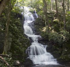 This route packs in a lot: Buttermilk Falls (at 200', the highest in NJ), Crater Lake, Hemlock Pond plus a little jaunt on the famous Appalachian trail. New Jersey, Jersey Girl, Camping In Nj, Camping Ideas, Buttermilk Falls, Waterfall Hikes, Crater Lake, Beautiful Waterfalls, Appalachian Trail