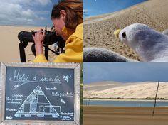 https://flic.kr/ps/2fNFYs   Galerie de Grand Site de la dune du Pilat
