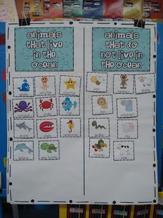 Oceans of Fun - Primary Press