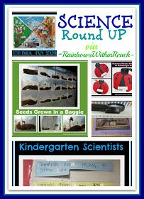 photo of: Science for Young Children, Preschool + Kindergarten Experiments (RoundUP via RainbowsWIthinReach)